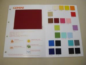 GEMINI (Small)